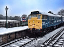 31438 In The Snow