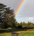 Racing and Rainbows