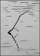Stick reflection