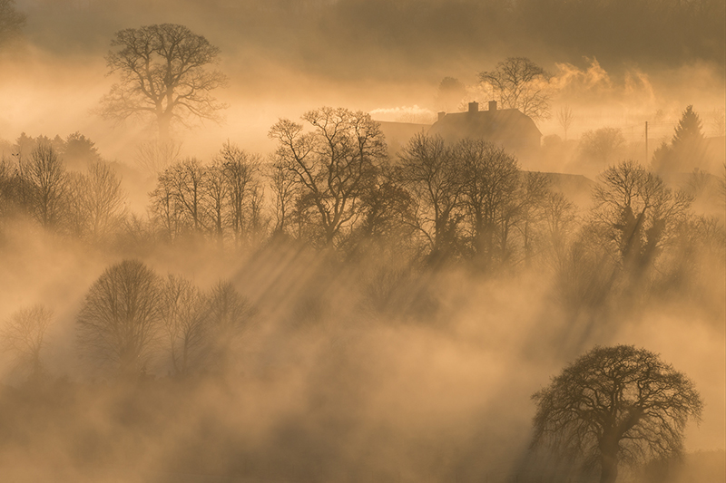 Mist in Vale of Pewsey