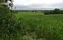 Near Ashton, Northants 2
