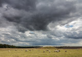 Burial mounds under a threatening sky