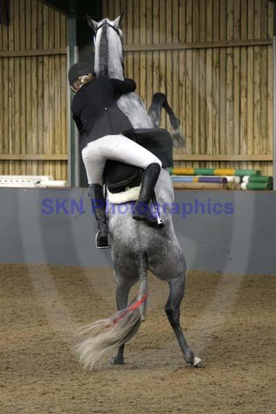 SKNIHS572
