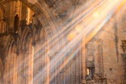 Abbey Sunlight