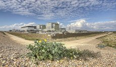 Man v Nature Dungeness