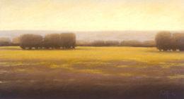 """Cottonwoods"", 2002"