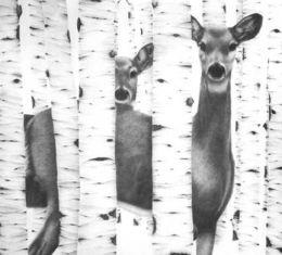"""""""Doe & Yearling"""", 1992"""