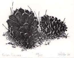 """""""Fallen Pinecones"""", 1983"""