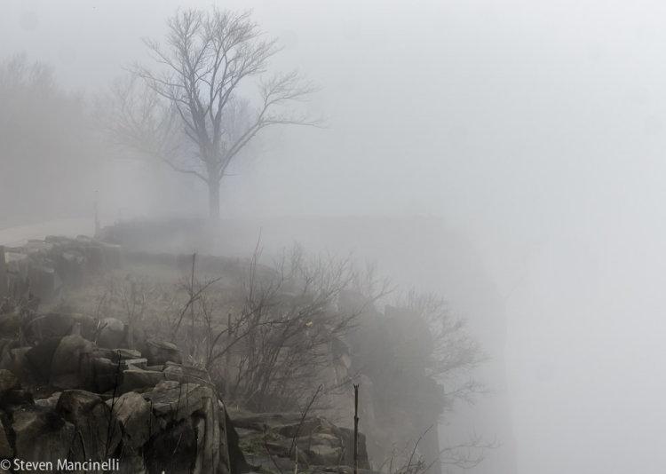 Fog On The Palisades
