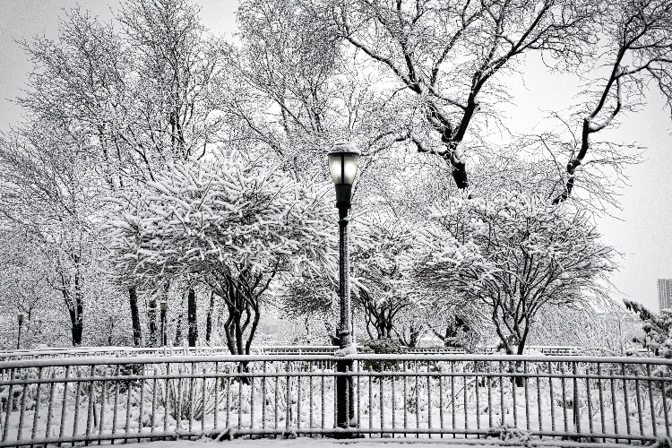 Lampost, Garden & Nor'Easter
