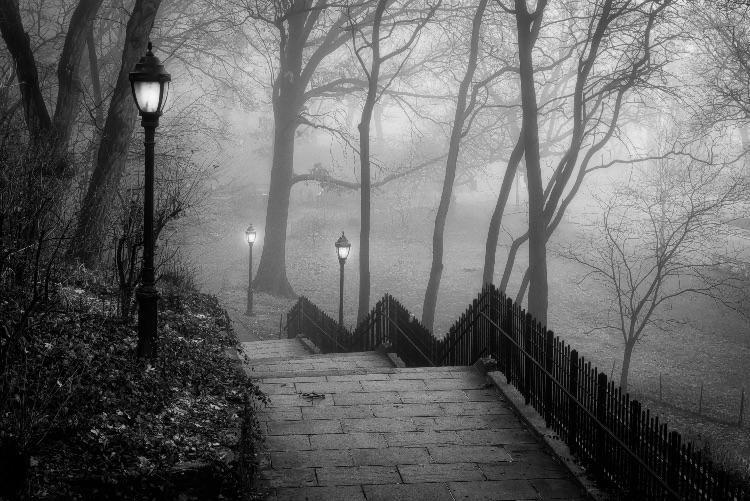 Morning Fog, Riverside Park, NYC