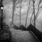 Morning Fog, Riverside Park, NYC