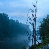 Twilight Mist On The Creek
