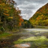 Dry Autumn, Stony Clove