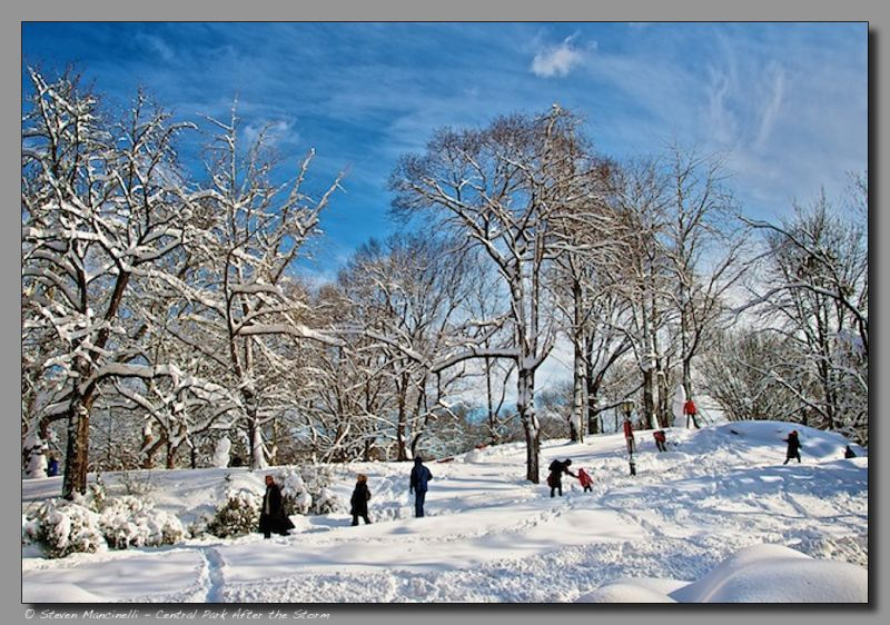 After the Snow Storm, Central Park