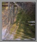 Reflection, Sawkill Dam