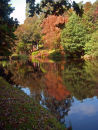 Reflections at Stourhead