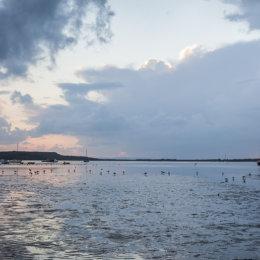 Mudeford Low Tide