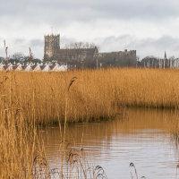 Stanpit Marsh & Christchurch Priory-4579