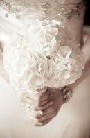 A bouquet of hydrangeas