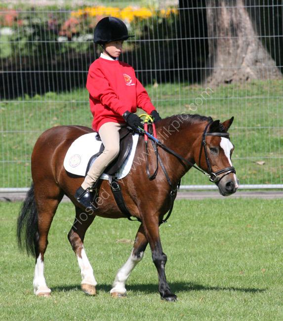 Equestrian 1 - Gage Bloxsom