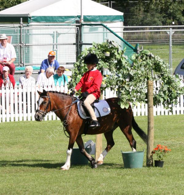 Equestrian 2 - Gage Bloxsom