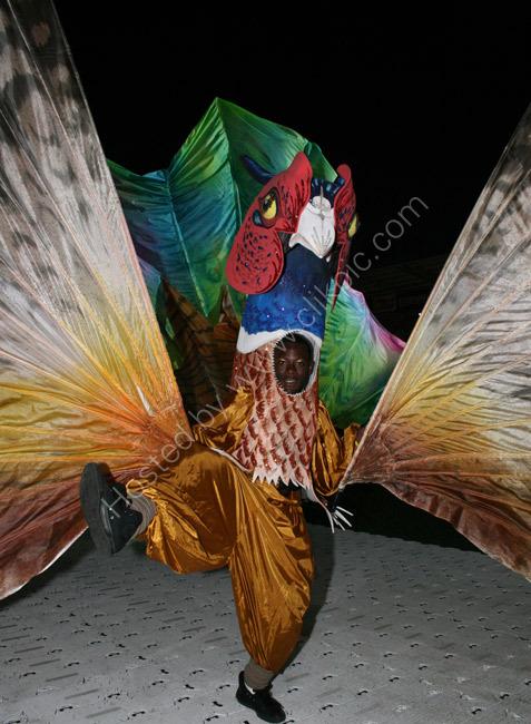 Mahogany Carnival Arts 2