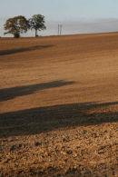 Arable Landscape 2