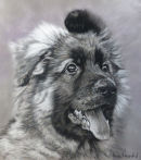 A black and white painting of a GSD Puppy