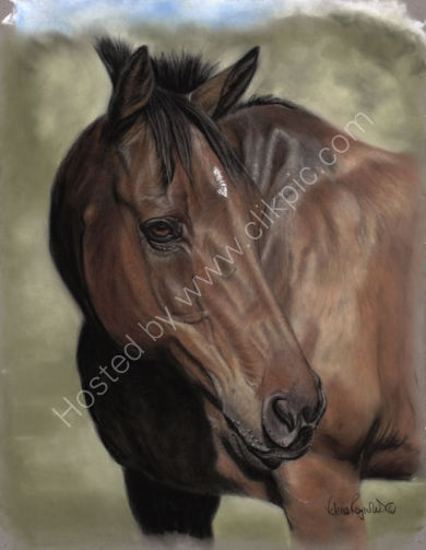 This is Anse who was commissioned by Elspeth as a gift for her Daughter - Amabel's - birthday