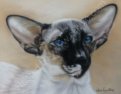 This is Celee who belonged to Frances and is sadly no longer with us.  You can read her story by clicking on her painting