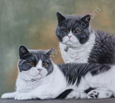 This cats were commissioned by Chris, as a gift for a dear friend