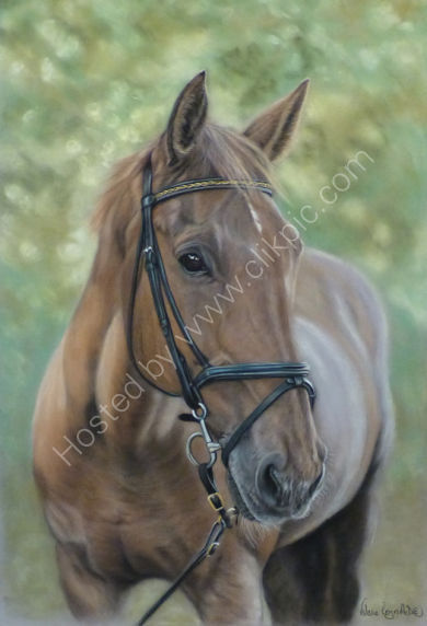 This is Eddie who belongs to Peter, please click on Eddie's painting to read more