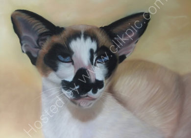 This is Pookie, you can read more by clicking on his painting
