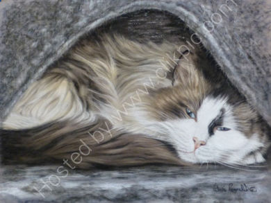 This is Gizmo you can read his story by clicking on his painting