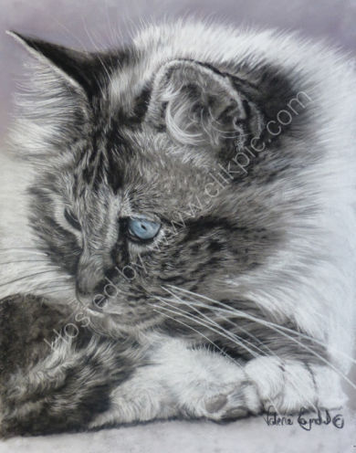 This is a black and white painting of my own cat Gulliver