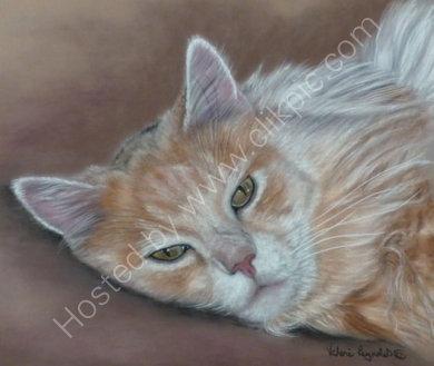 This is Jasper who belongs to Paula