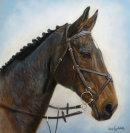 Sophie's Horse