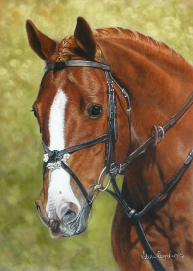 This is Tom who was painted for Alice's 16th birthday, as a gift from her Mum Jo .. lucky girl