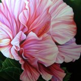 Blissful Hibiscus Original Oil Painting