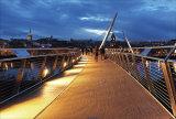 Bridge over the waters