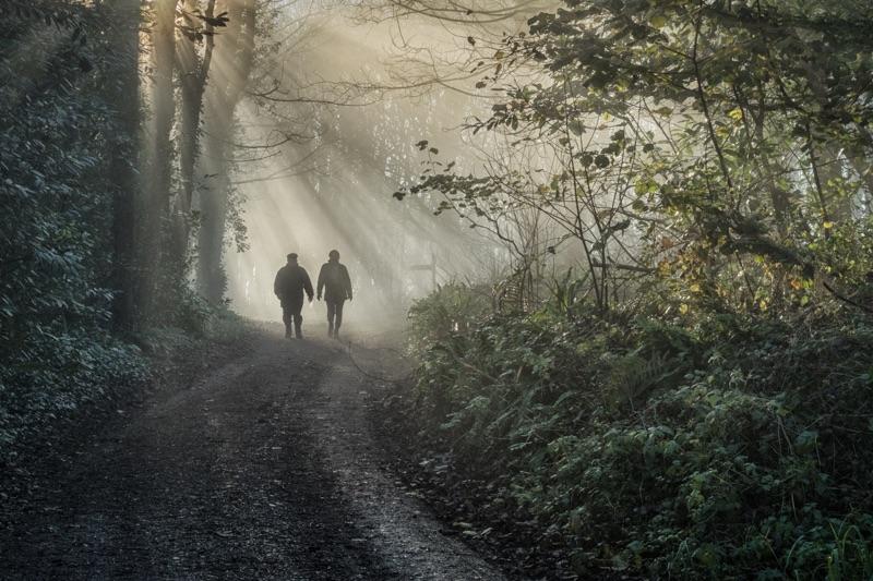 A Winter Stroll by Alan Bevis