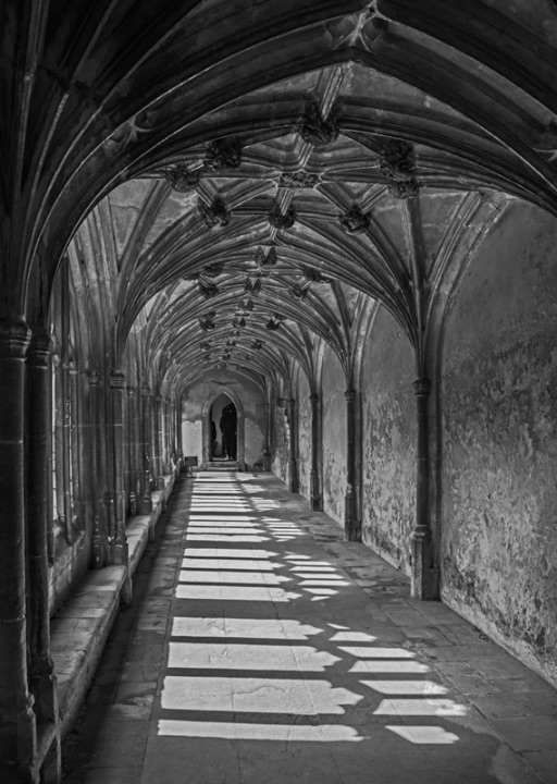 The Cloisters by Phil Harris