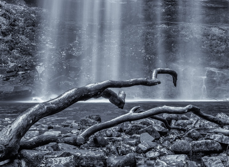 Waterlogged by Alan Bevis
