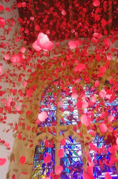 falling Poppies