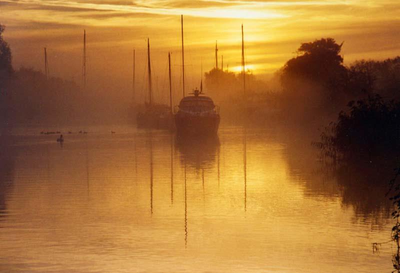 golden sunrise 1