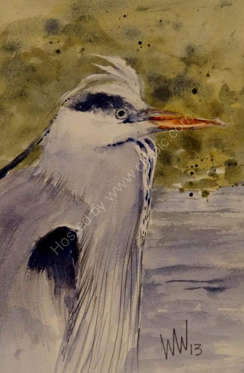 Heron, Peebles, 31 Dec 2013