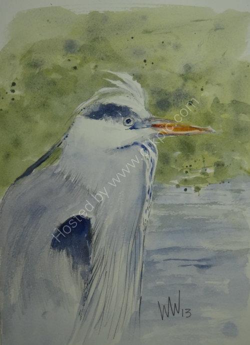 Heron Peebles 2013