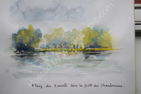 Etang des Essarts dans la foret des Chambarans, 2007