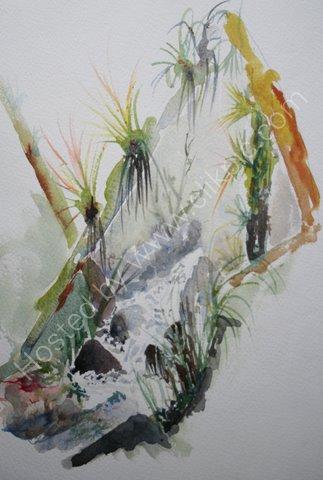 Bromeliads, w foothills, Cordillera Blanca, Peru